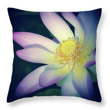 Throw Pillow featuring the photograph Evening Lotus  by Julie Palencia