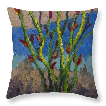 Evening Ocotillo Throw Pillow