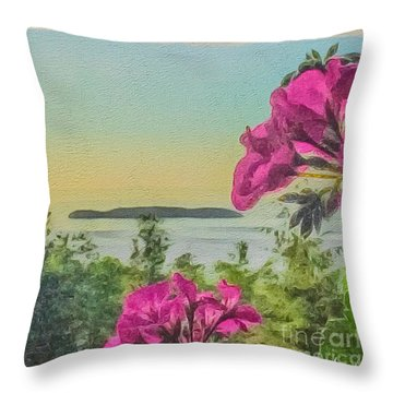 Islands Of The Salish Sea Throw Pillow by William Wyckoff