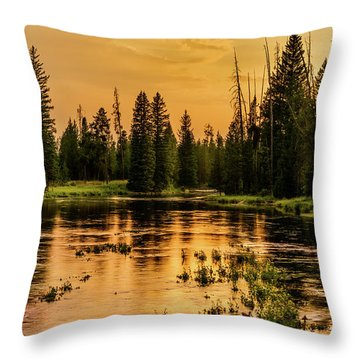 Throw Pillow featuring the photograph Evening On The Henry's Fork  by TL Mair