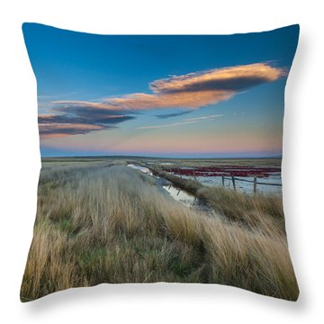 Throw Pillow featuring the photograph Evening On The Plains by Fran Riley