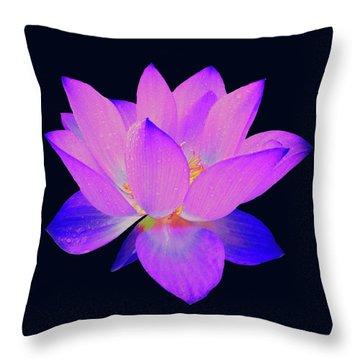 Evening Purple Lotus  Throw Pillow