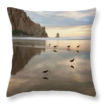 Evening Reflection Throw Pillow by Sharon Foster