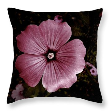Evening Rose Mallow Throw Pillow