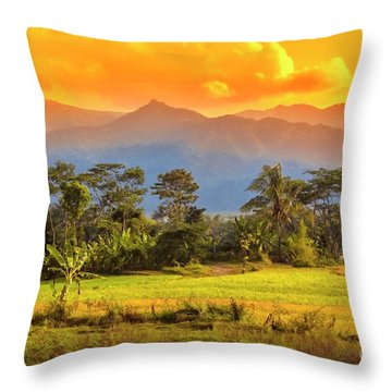Throw Pillow featuring the photograph Evening Scene by Charuhas Images