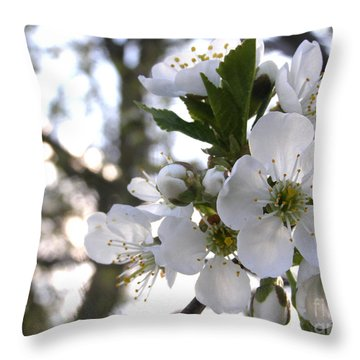 Throw Pillow featuring the photograph Evening Show - Cherry Blossoms by Angie Rea