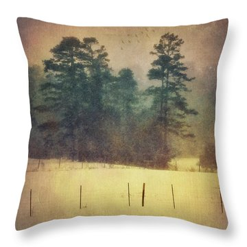Evening Snow Glow Throw Pillow