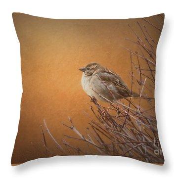 Evening Sparrow Song Throw Pillow