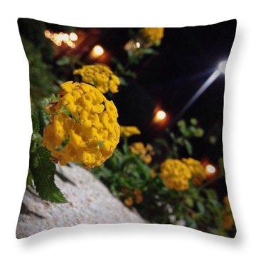 Evening Spring Throw Pillow