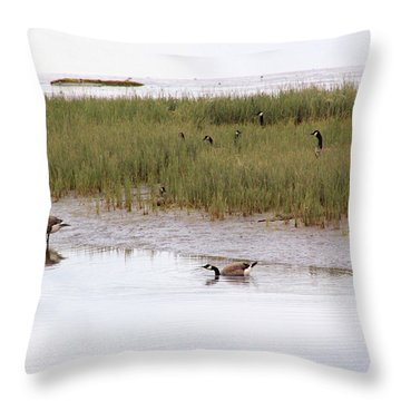 Evening Stollers Throw Pillow