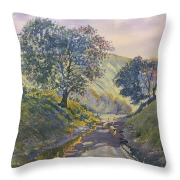 Evening Stroll In Millington Dale Throw Pillow