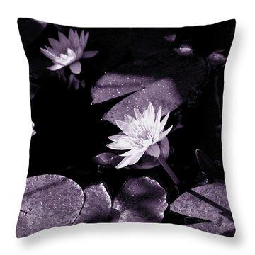 Evening Sun Light Throw Pillow by Susanne Van Hulst