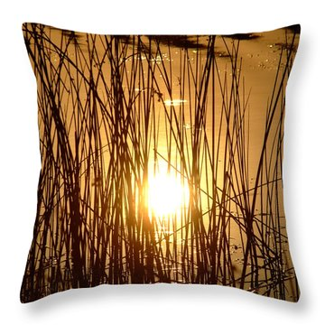 Evening Sunset Over Water Throw Pillow
