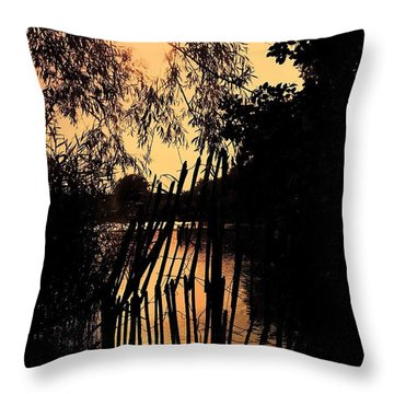 Evening Time Throw Pillow