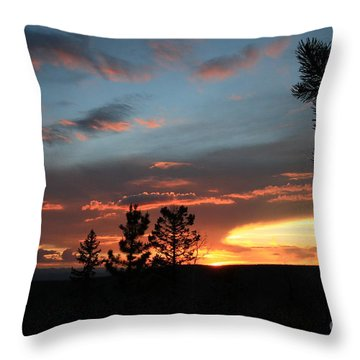 Evening View  Throw Pillow by Edward R Wisell