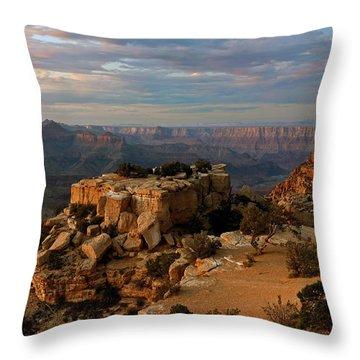 Evening Vista Throw Pillow