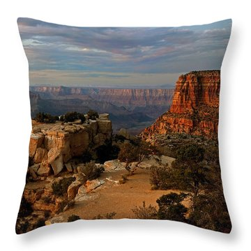 Evening Vista Throw Pillow