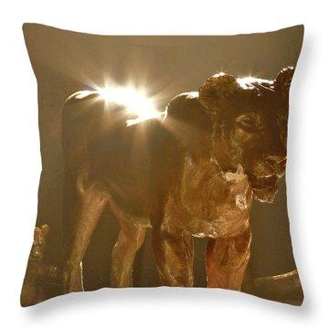 Evening's Light Throw Pillow