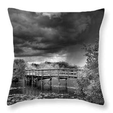 Everglades 0823bw Throw Pillow