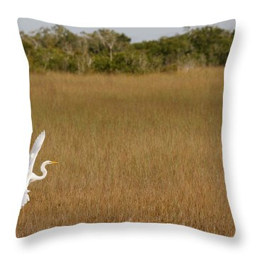 Everglades 429 Throw Pillow