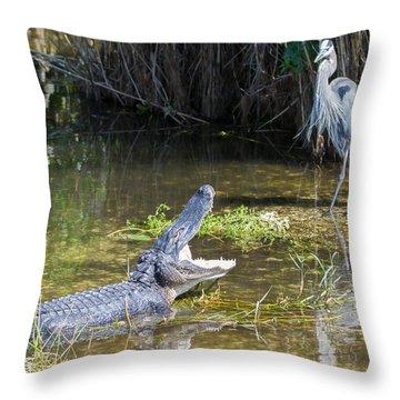 Everglades 431 Throw Pillow