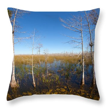 Everglades 85 Throw Pillow
