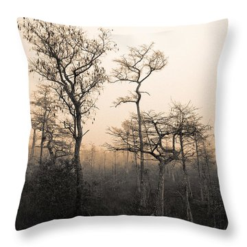 Throw Pillow featuring the photograph Everglades Cypress Stand by Gary Dean Mercer Clark