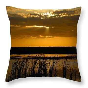 Everglades Evening Throw Pillow by David Lee Thompson