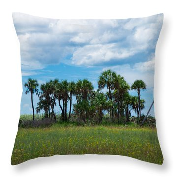Everglades Landscape Throw Pillow by Christopher L Thomley