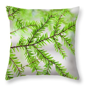 Evergreen Abstract Throw Pillow by Christina Rollo