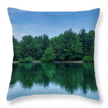 Evergreen Lake Reflections Throw Pillow