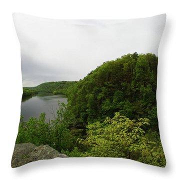 Evermour Throw Pillow