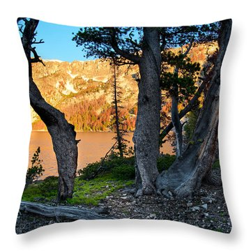 Everson Lake 2 Throw Pillow by Leland D Howard