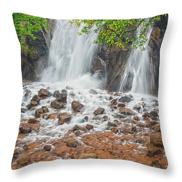 Every Day May Not Be Good, But There's Something Good In Every Day.  Throw Pillow