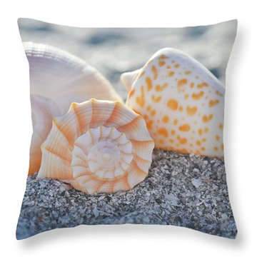 Throw Pillow featuring the photograph Every Shell Has A Story by Melanie Moraga