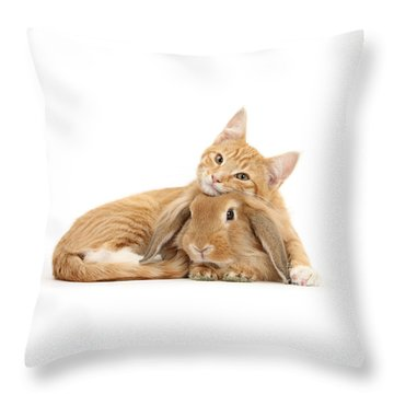 Everybody Needs A Bunny For A Pillow Throw Pillow