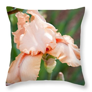 Throw Pillow featuring the photograph Everything Is Peachy by Sherry Hallemeier