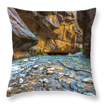 Evidence Throw Pillow