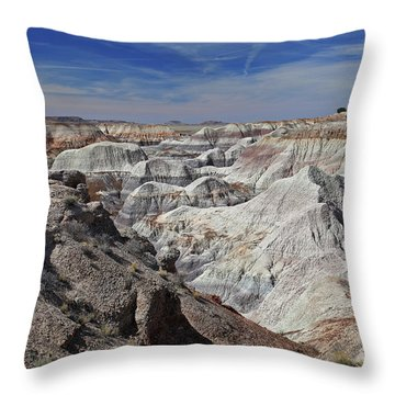 Evident Erosion Throw Pillow