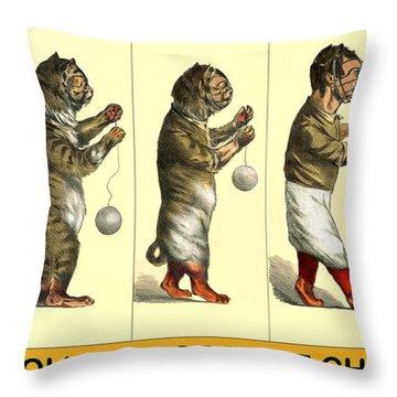 Evolution Of A Cat-cher Throw Pillow