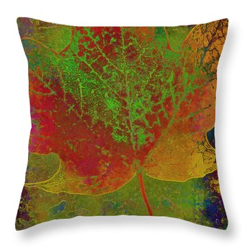 Evolution Of Life Throw Pillow by Deborah Benoit