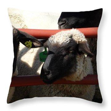 Ewe Gate Throw Pillow