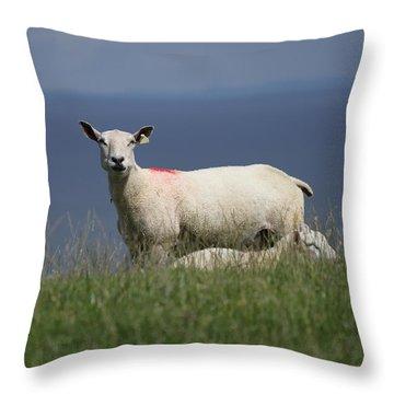 Ewe Guarding Lamb Throw Pillow