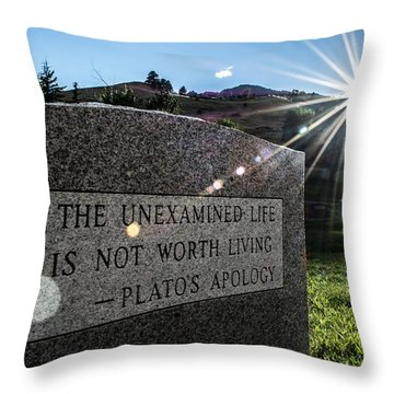 Throw Pillow featuring the photograph Examined Life Color by Rhys Arithson