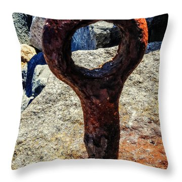 Excaliber  Throw Pillow by Bruce Carpenter