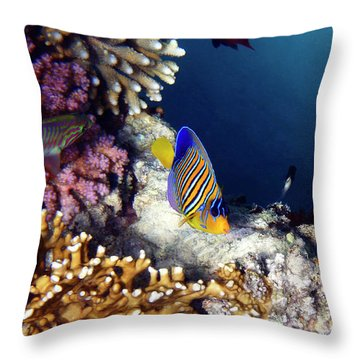 Exciting Red Sea World Throw Pillow