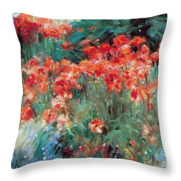 Excitment Throw Pillow
