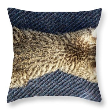 Exhausted Throw Pillow by Constantine Gregory
