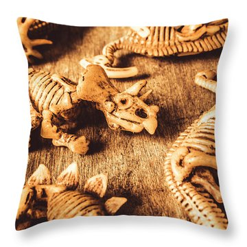 Exhibition In Prehistoric Art Throw Pillow