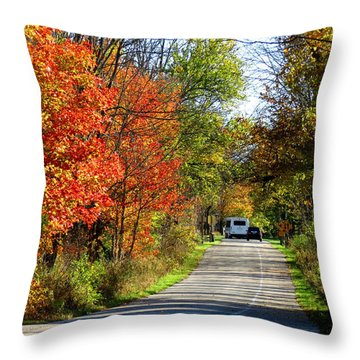 Exit The Park Throw Pillow